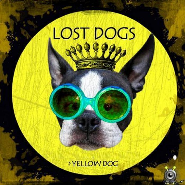 LOST DOGS - Yellow Dog