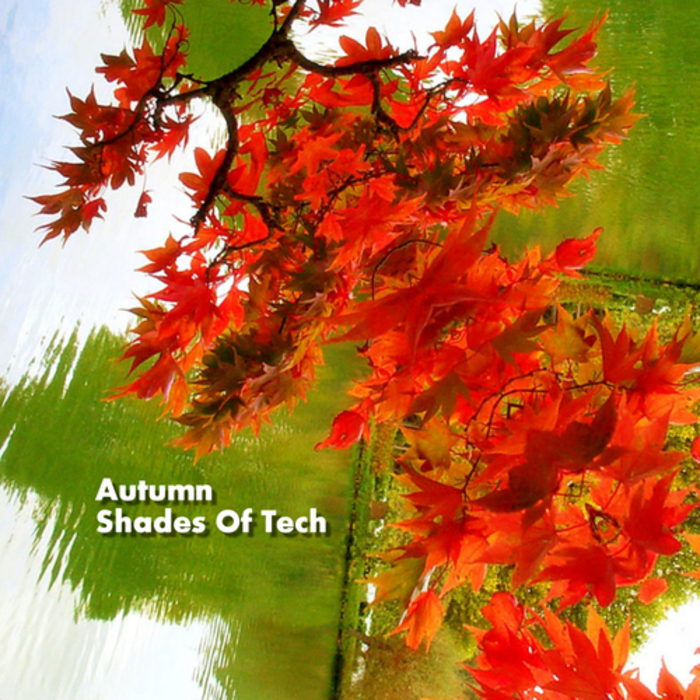 VARIOUS - Autumn Shades Of Tech