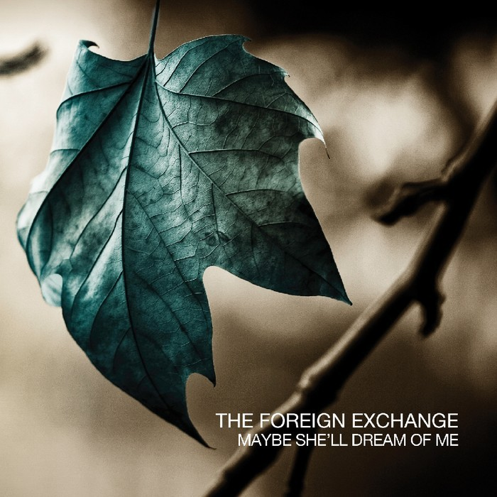 FOREIGN EXCHANGE, The - Maybe She'll Dream Of Me