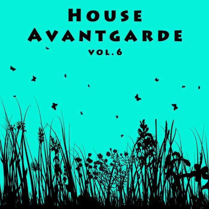 VARIOUS - House Avantgarde Vol 6