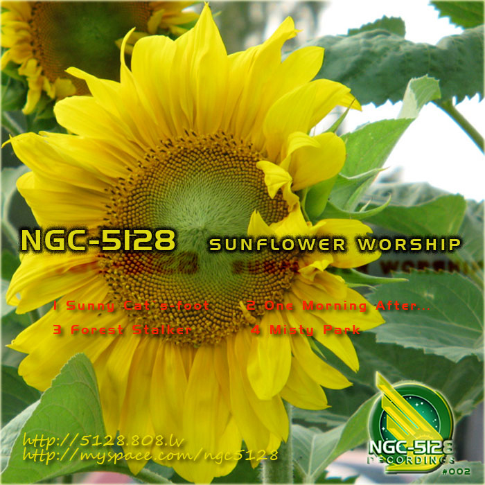 NGC 5128 - Sunflower Worship EP