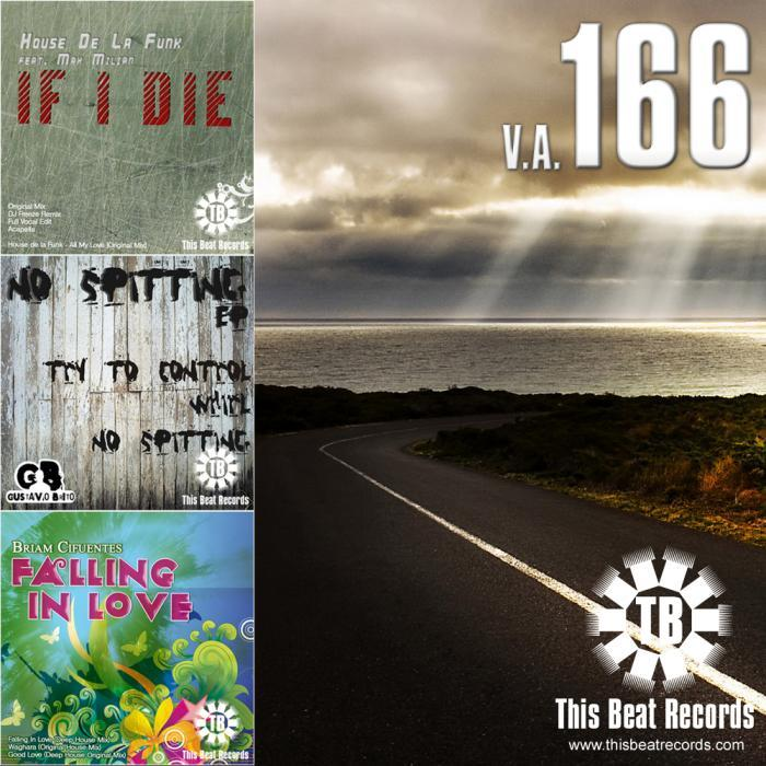 VARIOUS - This Beat 166