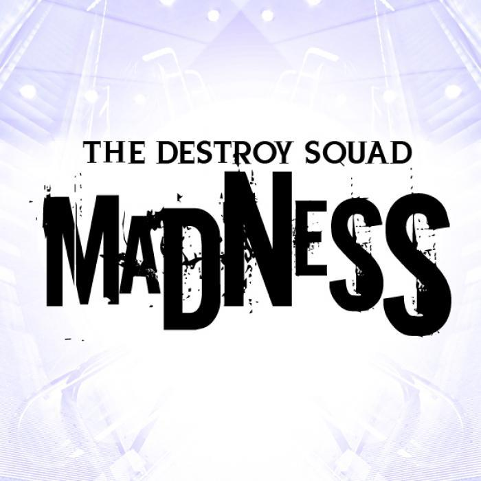 DESTROY SQUAD, The - Madness