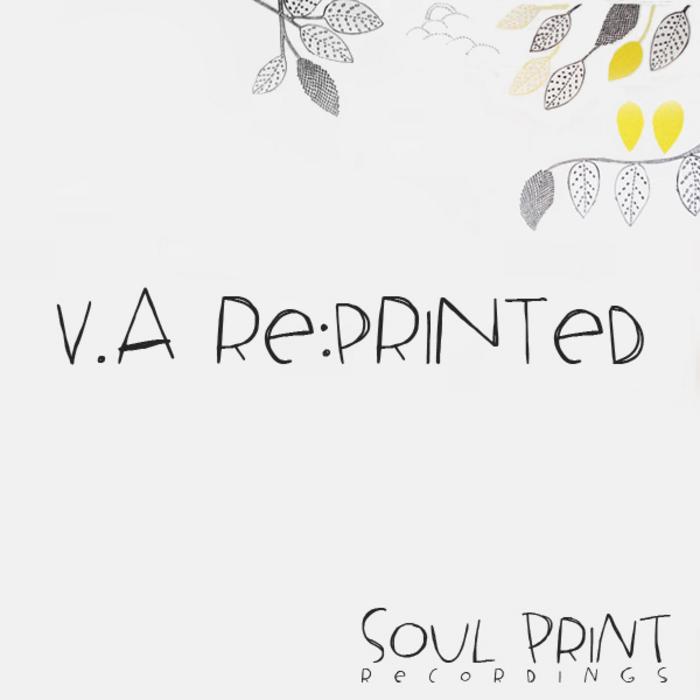 VARIOUS - Re:Printed