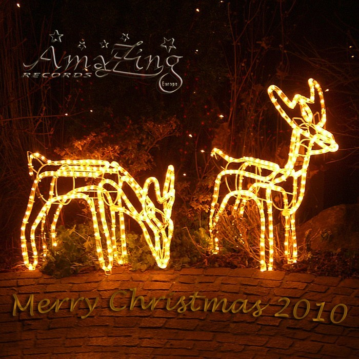 VARIOUS - The Christmas Album