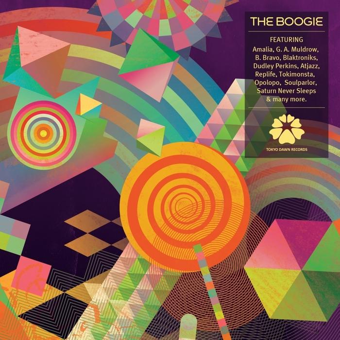 VARIOUS - The Boogie