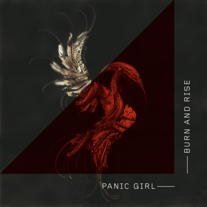 PANIC GIRL - The Panic Girl (remixes)