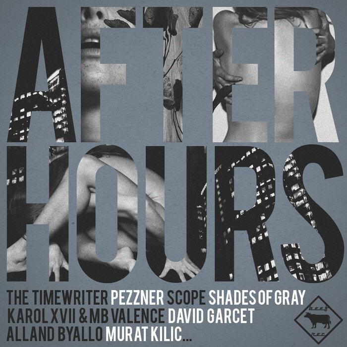 DJ SCHWA/VARIOUS - After Hours (unmixed tracks)
