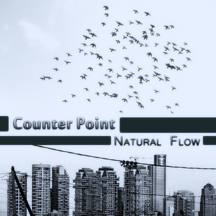 COUNTER POINT - Natural Flow