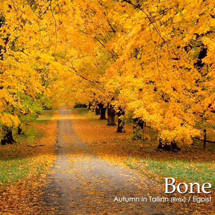 BONE - Autumn In Tallinn