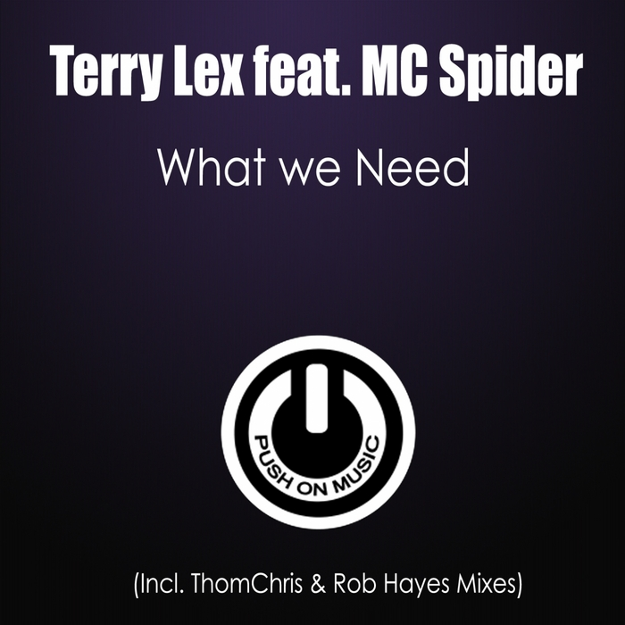 LEX, Terry feat MC SPIDER - What We Need