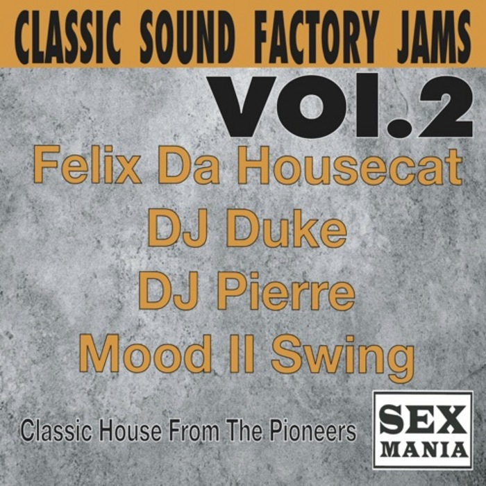 VARIOUS - Classic Sound Factory Jams Vol 2
