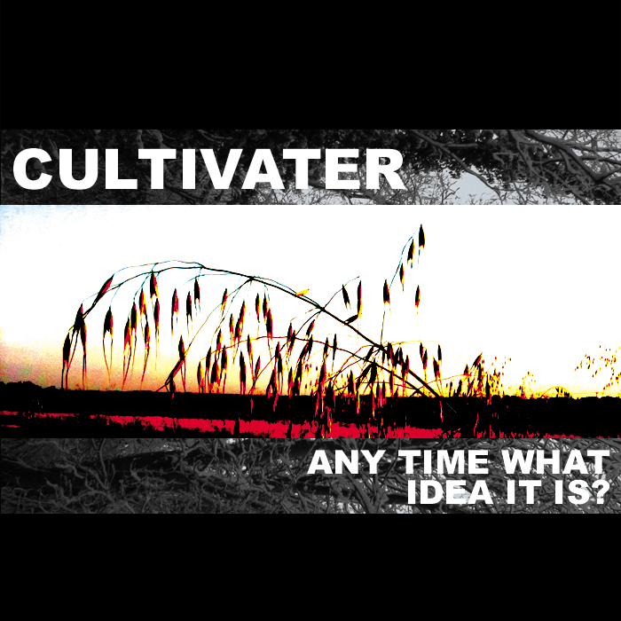 CULTIVATER - Any Time What Idea It Is?
