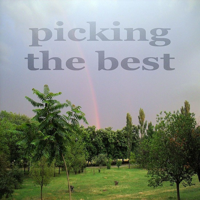 1ST CLASS/PADURARU - Picking The Best