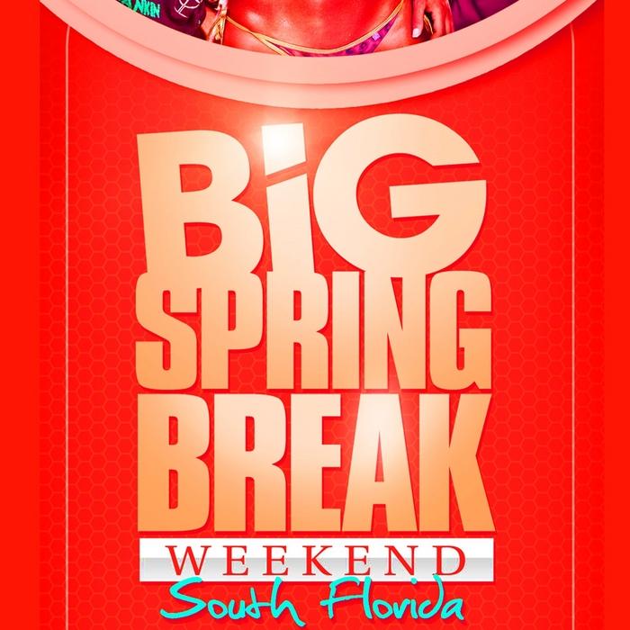 VARIOUS - Big Springbreak Week End 2011