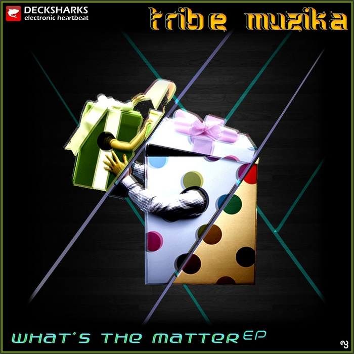 TRIBE MUZIKA - Whats The Matter EP