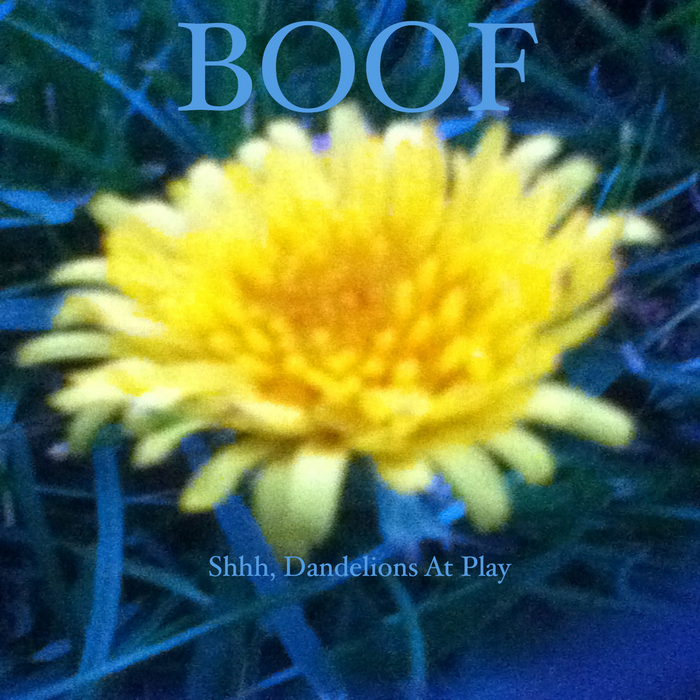 BOOF - Shhh Dandelions At Play