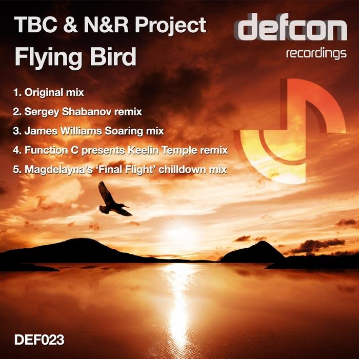 TBC & N&R PROJECT - Flying Bird