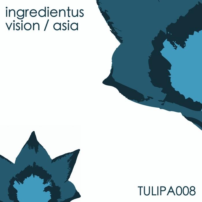 INGREDIENTUS - Vision