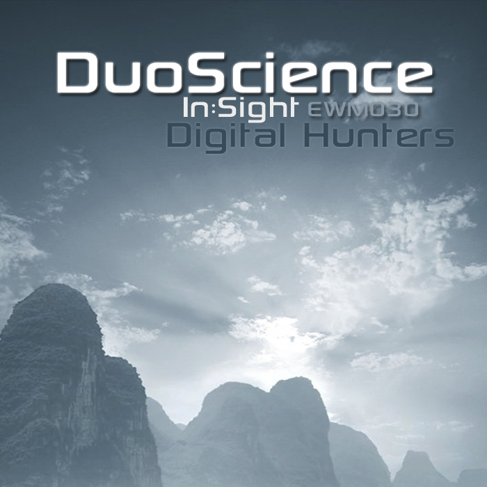 DUOSCIENCE/IN SIGHT/DIGITAL HUNTERS - The Decade
