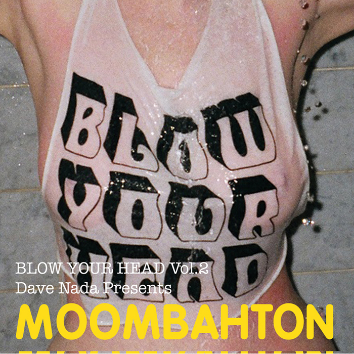 VARIOUS - Blow Your Head Vol 2: Dave Nada Presents Moombahton