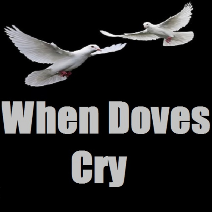 All About When Doves Cry By Prince Song Meanings At Songfacts