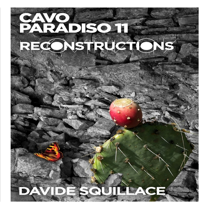 SQUILLAC, Davide/VARIOUS - Cavo Paradiso 11 (Reconstructions mixed by Davide Squillace) (unmixed tracks)