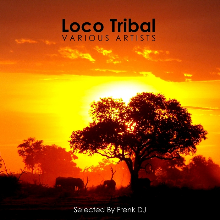 FRENK DJ/VARIOUS - Loco Tribal (selected by Frenk DJ)