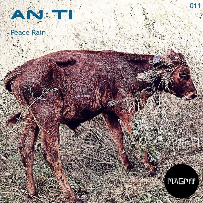 AN TI - Peace Rain