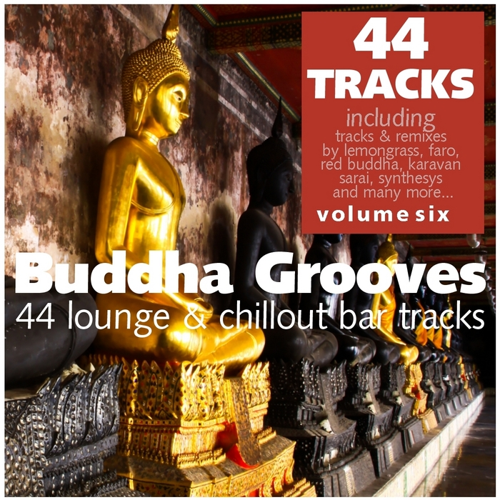 VARIOUS - Buddha Grooves Vol 6