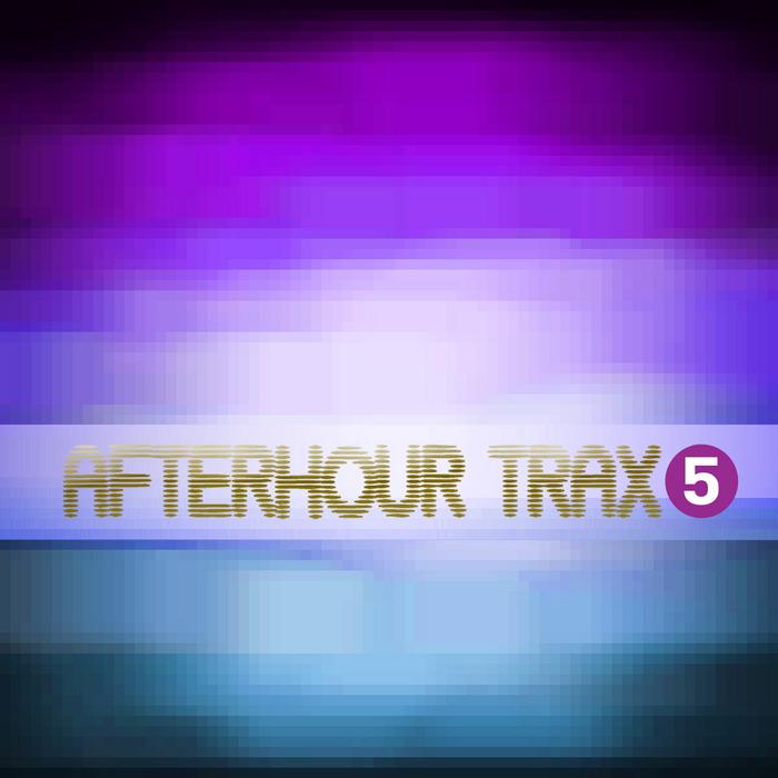 VARIOUS - Afterhour Trax 5