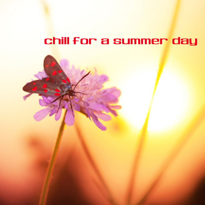 VARIOUS - Chill For A Summer Day
