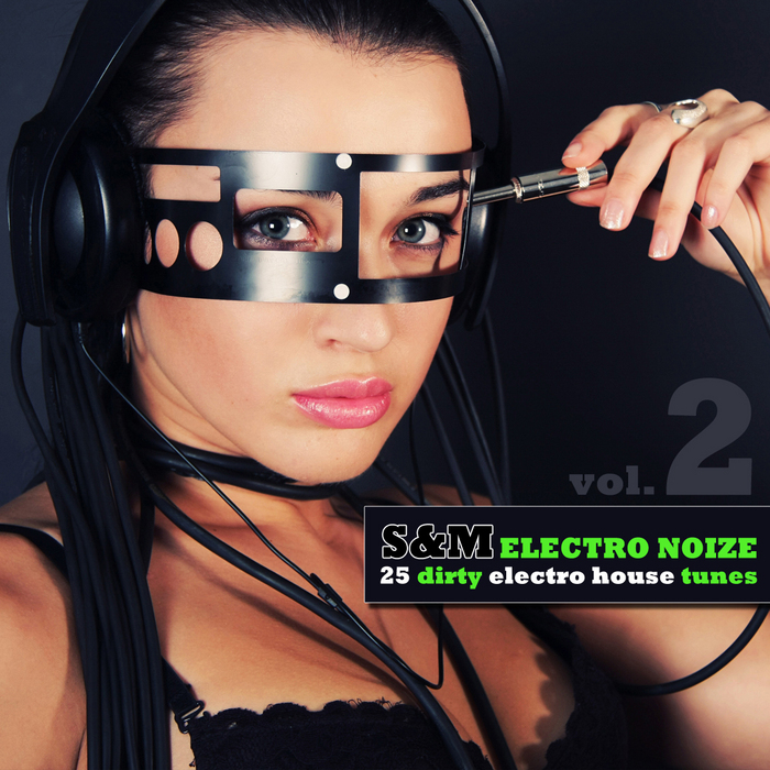 VARIOUS - S&M Electro Noize Vol 2 (25 Dirty Electro House Tunes)