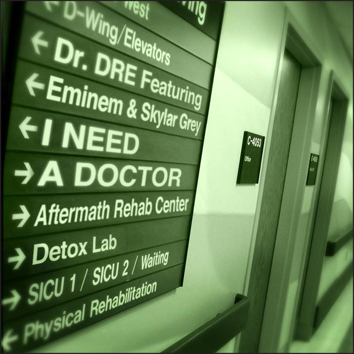 I need a doctor eminem ft dr dre free mp3 download.