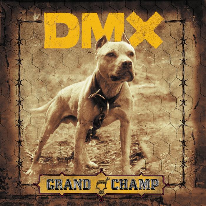 CHAMP GRAND TÉLÉCHARGER DMX
