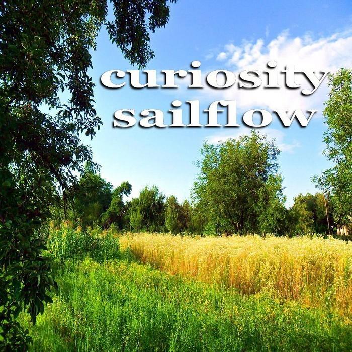COOLERIKA vs DJ SCALDIA - Curiosity Sailflow (Inspiring House Music)