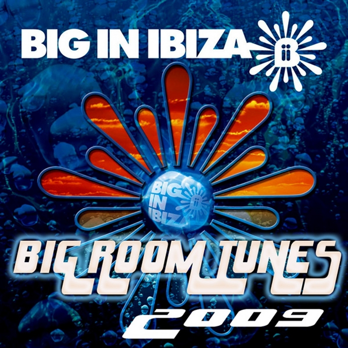 VARIOUS - Big Room Tunes 2009