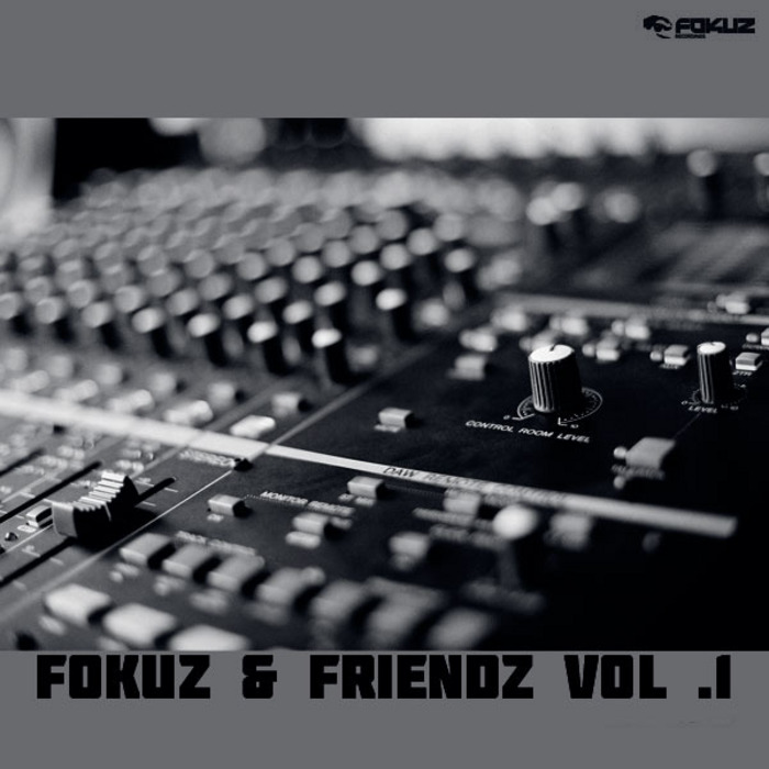 VARIOUS - Fokuz & Friends Vol 1