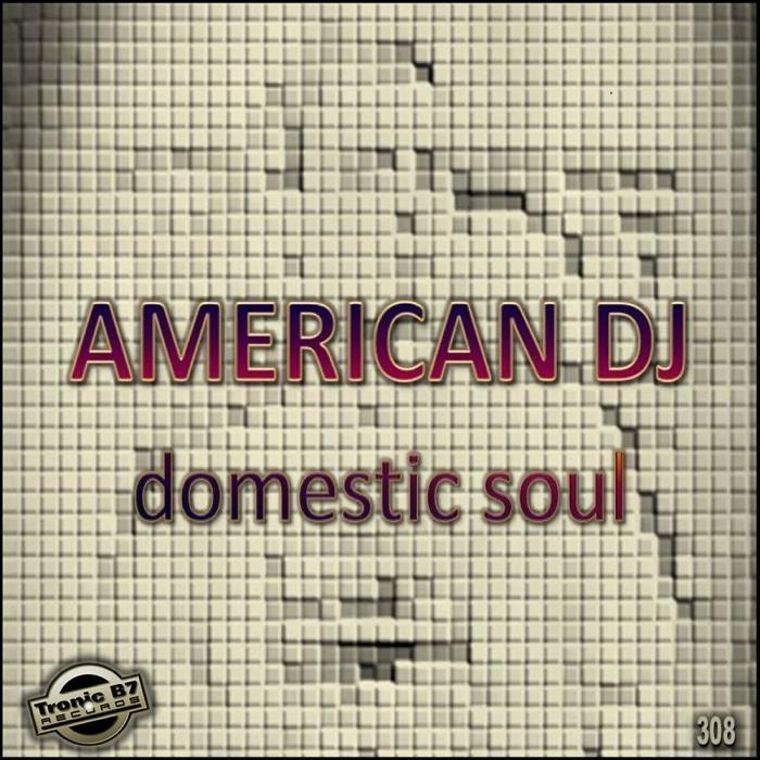 AMERICAN DJ - Domestic Soul EP