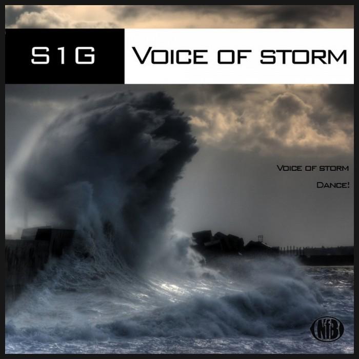 S1G - Voice Of Storm