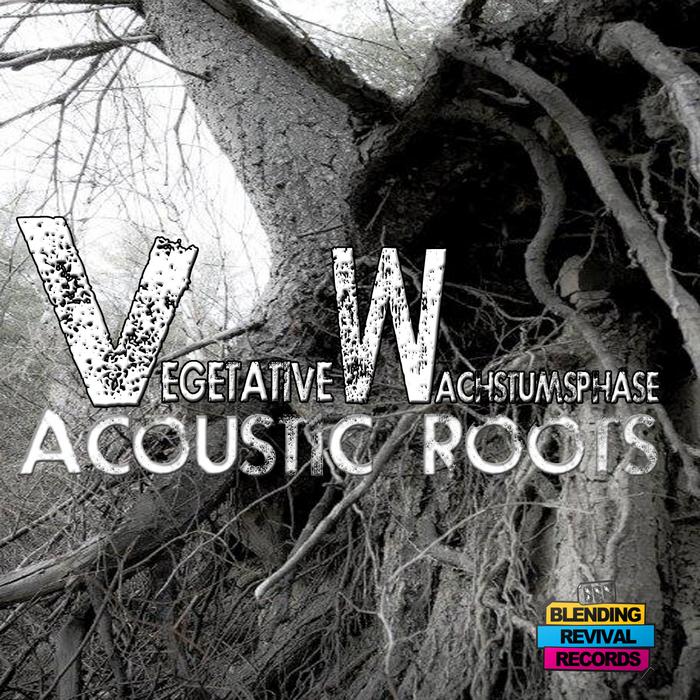 VEGETATIVE WACHSTUMSPHASE - Acoustic Roots