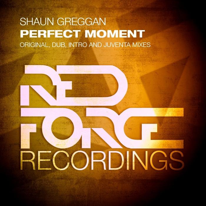 GREGGAN, Shaun - Perfect Moment