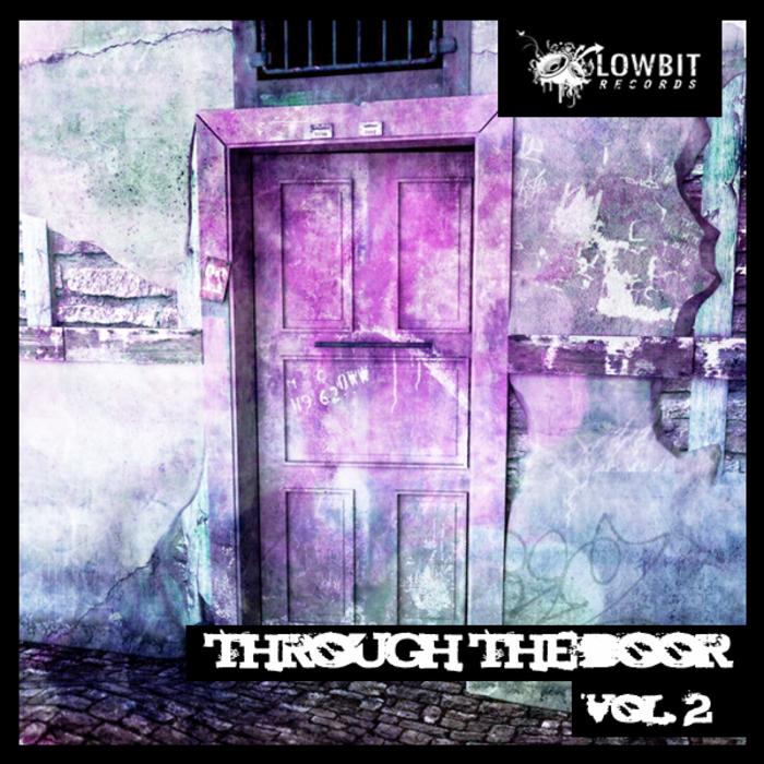 VARIOUS - Through The Door Vol 2