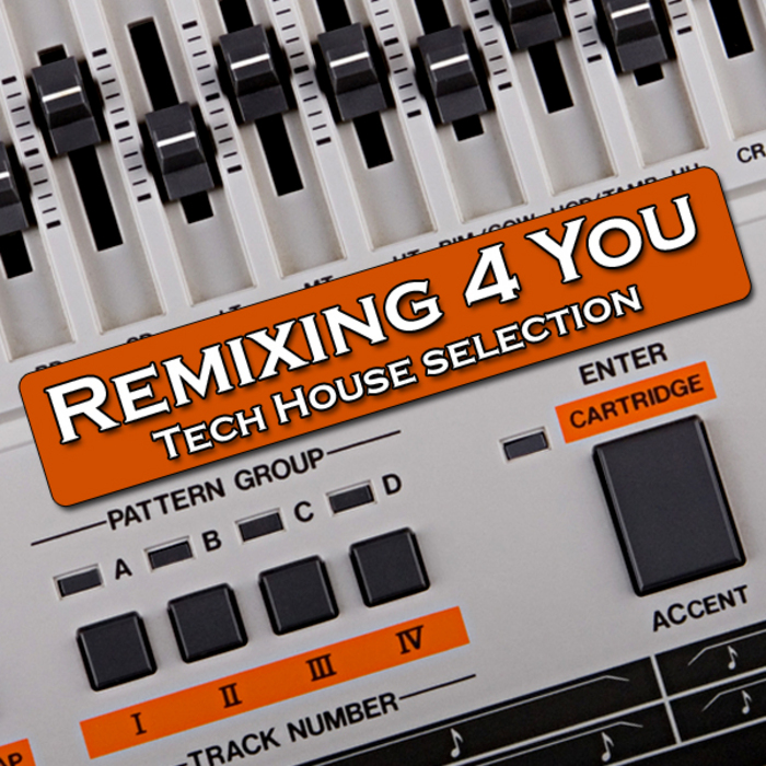 VARIOUS - Remixing 4 You (Tech House Session)