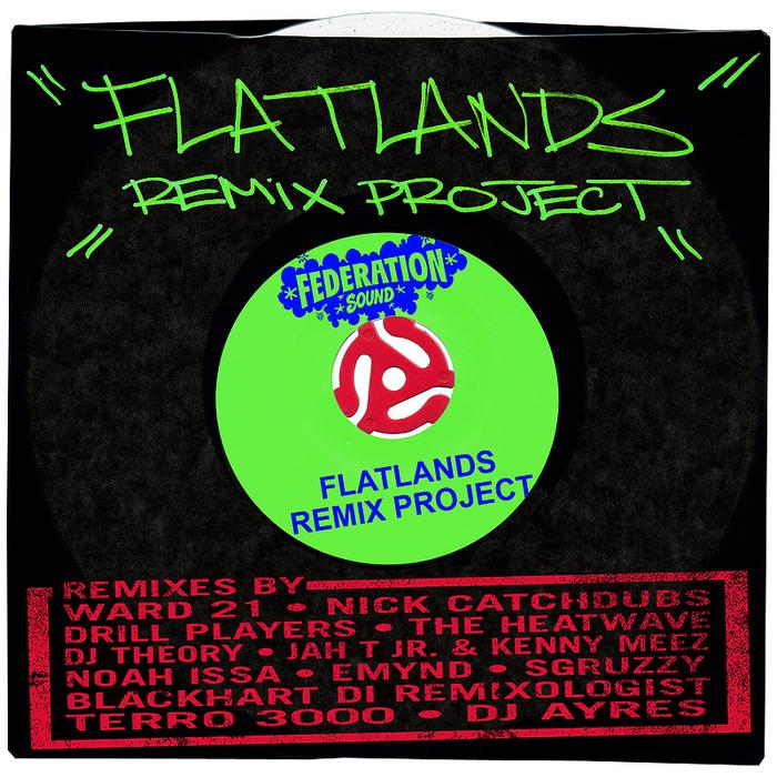 VARIOUS - Flatlands Remix Project