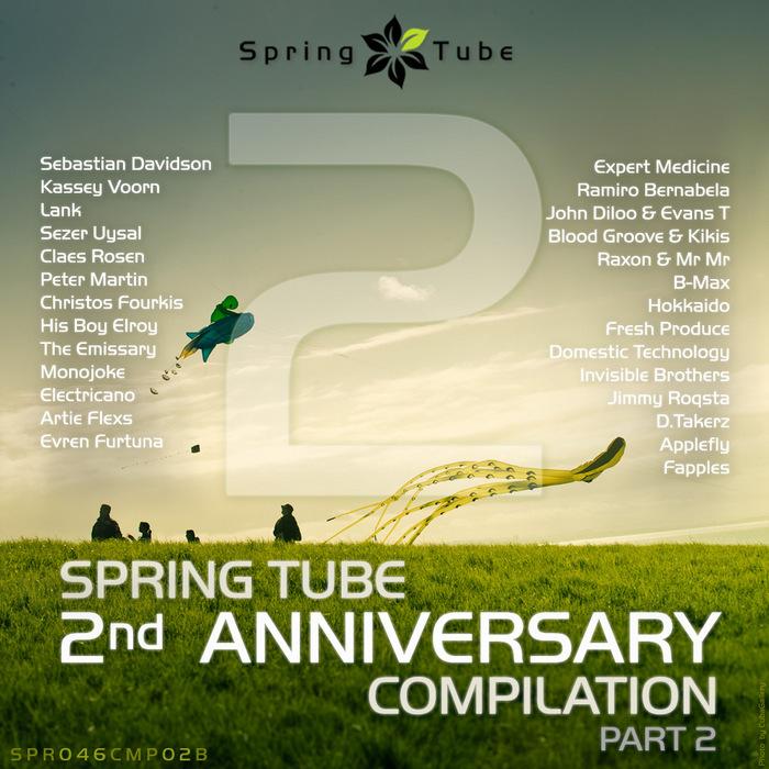 DJ SLANG/VARIOUS - Spring Tube 2nd Anniversary Compilation Part 2 (unmixed tracks)