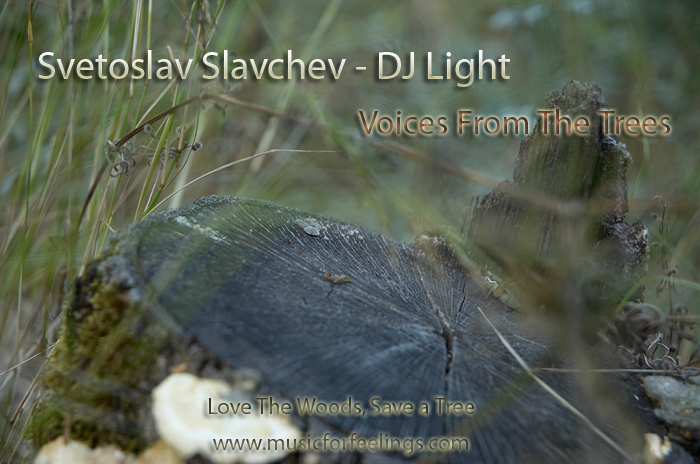 SLAVCHEV, Svetoslav (DJ LIGHT) - Voices From The Trees