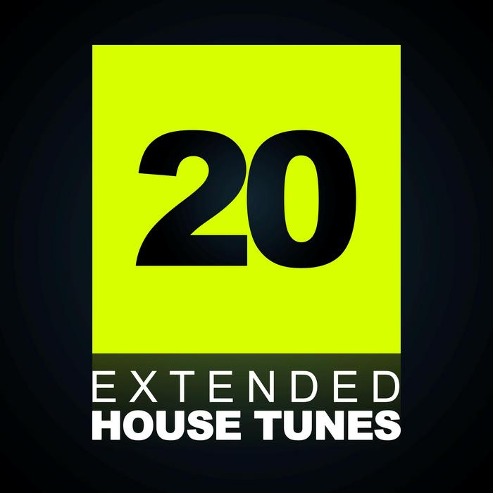 VARIOUS - 20 Extended House Tunes