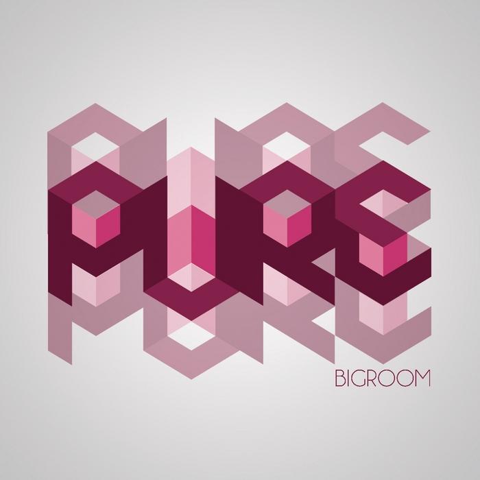 VARIOUS - Pure Bigroom