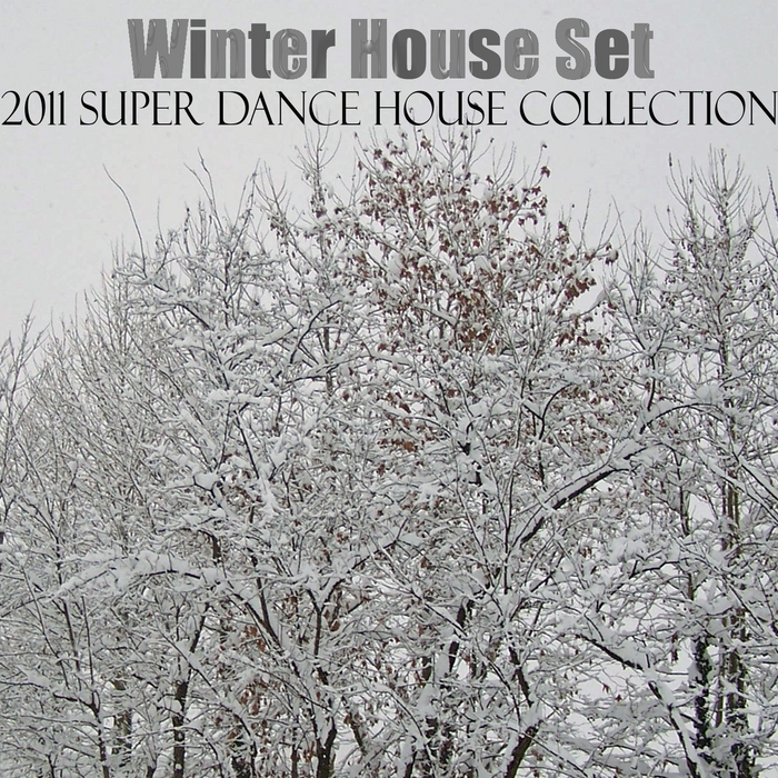 VARIOUS - Winter House Set (2011 Super Dance House Collection)